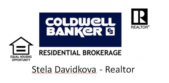 stela davidkova realtor website